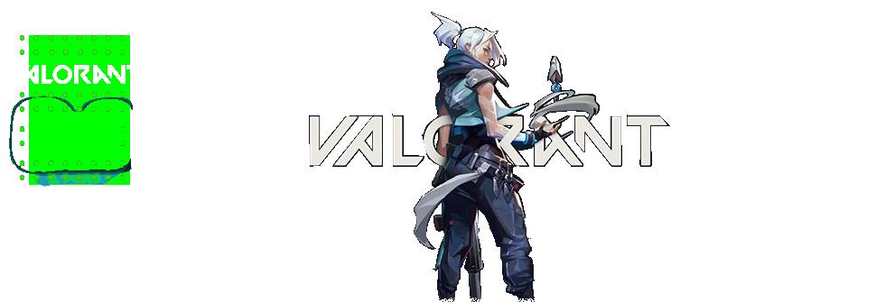 Valorant Razer No Recoil Macro 4in1