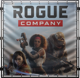 Rogue Company No Recoil Macro