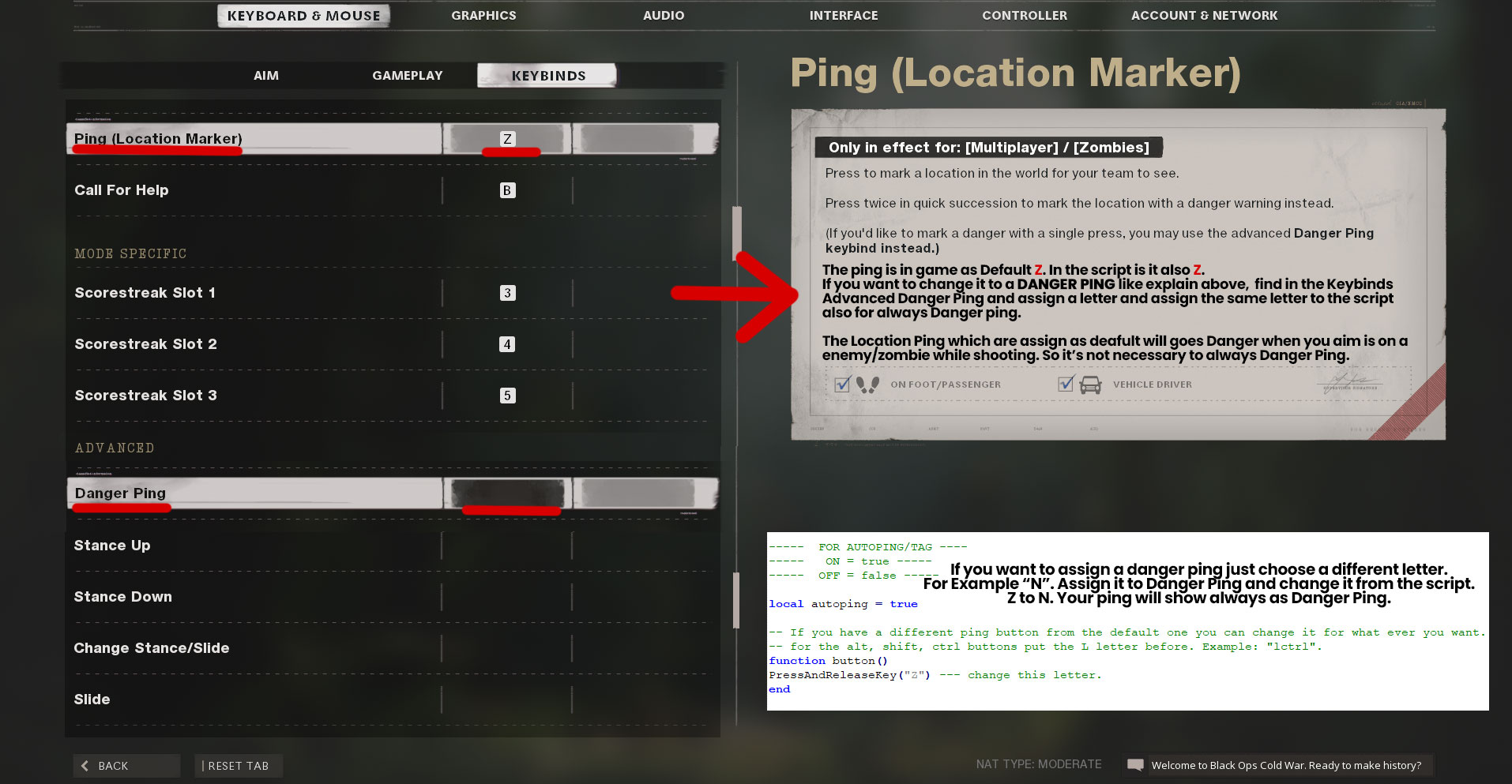 How to use Auto Ping / Auto Tag ?